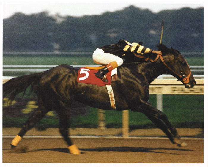 Seattle_Slew_Marlboro.jpg