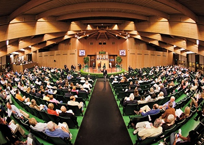 Buying a Racehorse at a Racehorse Auction